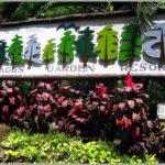 Malagos-Garden-Resort